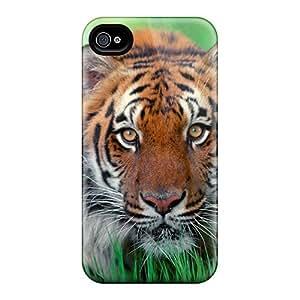 New TSV44165wTve Sumatran Tiger Covers Cases For Iphone 6plus