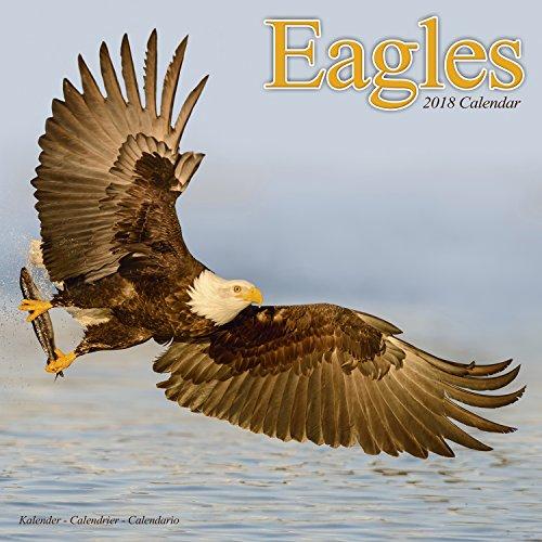 Eagle Calendar - Calendars 2017 - 2018 Wall Calendars - Animal Calendar - Eagles 16 Month Wall Calendar by Avonside