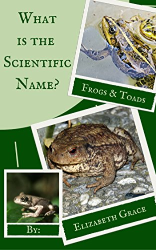 Frogs and Toads: What is the scientific name? (English Edition)