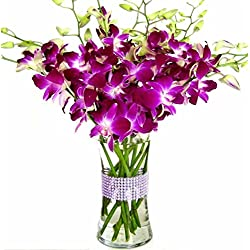 Happy Valentine's Day! Purple Dendrobium Orchids with Vase w/ Rhinestone Mesh Ribbon