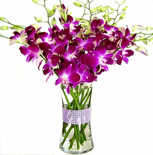 Happy Mothers Day Purple Dendrobium Orchids With Vase W