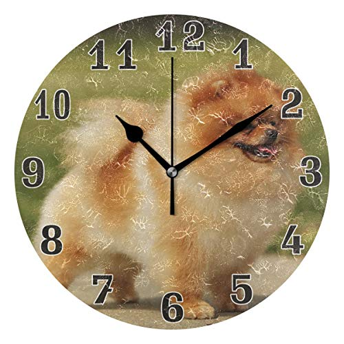 WXLIFE Cute Dog Breed Pomeranian Round Acrylic Wall Clock, Silent Non Ticking Art Painting for Kids Bedroom Living Room Office School Home Decor ()