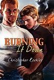 Burning It Down, Christopher Koehler, 162380230X