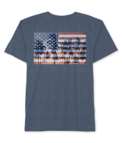 Hybrid Men's USA American Flag Palm Trees Graphic T Shirt (Denim Heather, Large) (Palm Hybrid)