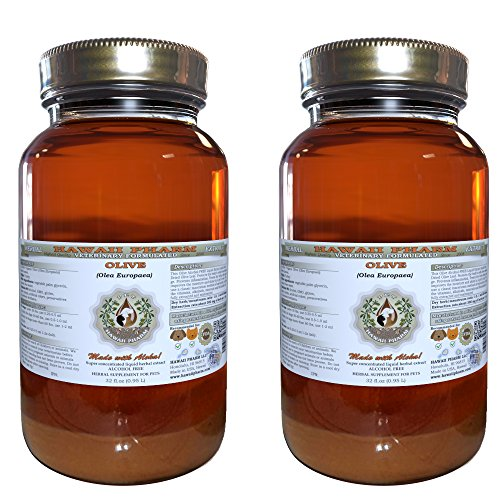 Olive (Olea europaea) Organic Dried Leaf VETERINARY Natural Alcohol-FREE Liquid Extract, Pet Herbal Supplement 2x32 oz by HawaiiPharm