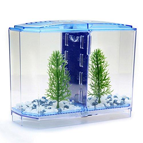 Corner Biz Aquarium - Twin Betta Bow Front Tank Aquarium Kit - Veneer Bow