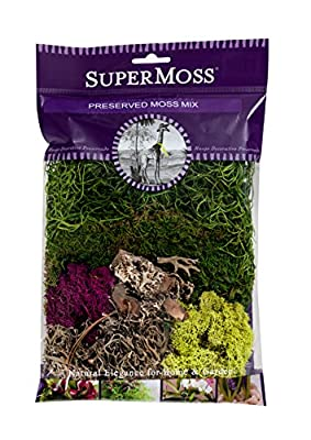 SuperMoss Moss Mix Preserved