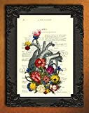 Anatomical Heart with Flowers Dictionary Art Print, Colorful Floral Human Anatomy Poster on Antique Book Page Wall Art, Home Decorations for Living Room