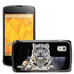 Hot Style Cell Phone PC Hard Case Cover // M00047366 snow leopard snow sitting leopard rock // LG NEXUS 4