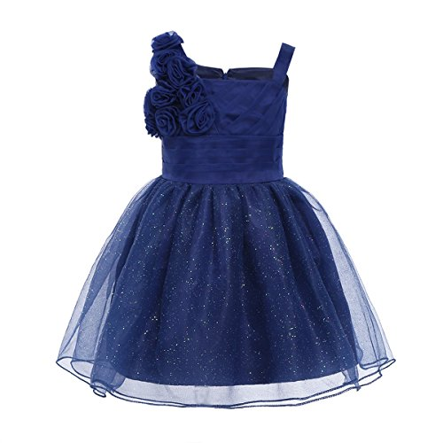 YiZYiF Baby Girls 3D Rose Princess Wedding Christening Party Tutu Glitter Flower Girl Dress Navy Blue 18-24 Months]()