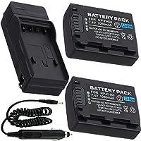 Battery (2-Pack) + Charger For Sony DCR-SR42, DCR-SR45 Handycam camcorder