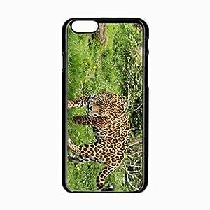 iPhone 6 Black Hardshell Case 4.7inch leopard grass walk Desin Images Protector Back Cover