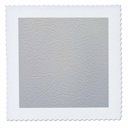 3dRose TDSwhite - Miscellaneous Photography - Refrigerator Surface - 22x22 inch Quilt Square (qs_285432_9)