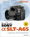 David Busch's Sony Alpha SLT-A65 Guide to Digital Photography (David Busch's Digital Photography Guides)
