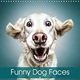 a3dedd2f09b Funny Dog Faces 2019  Gorgeous dog faces with a touch of humour (Calvendo  Animals