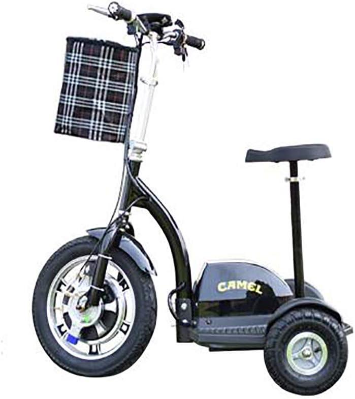 3 Rueda de Bicicleta eléctrica, Triciclo eléctrico para Adultos, Tres Ruedas Scooter para Ancianos Adultos Hombres Mujeres Personas con discapacidad -48 V / 12 A/Carga 160KG / Millas 35-45Km