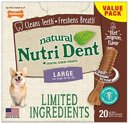 Nylabone Nutri Dent Natural Dental Filet Mignon Flavored Chew Treats