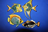 Salty Pelican Kids Bathroom Colorful Coral Reef Fish Wall Decor Moisture Resistant, 6 inch, Bundle 4 Fish