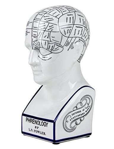 Authentic Phrenology Porcelain Head Bust Model by L.N. Fowler