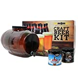 : Mr. Beer Premium Gold Edition 2 Gallon Homebrewing Craft Beer Making Kit With Two Beer Refills