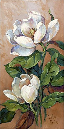 Magnolia Accents I by Barbara Mock Laminated Art Print, 9 x 18 inches