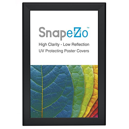 Black Poster Frame 11x17 Inch, 1.25 SnapeZo Profile, Front-Loading Snap Frame, Wall Mounted, Professional Series