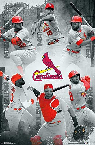 Trends International St. Louis Cardinals – Team Wall Poster, Multi