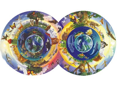 Biodiversity Double Circle Jigsaw Puzzle 800pc