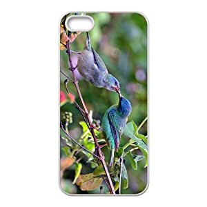 The Kiss Of Bird Hight Quality Plastic Case for Iphone 5s