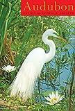 Audubon Birder's Engagement Calendar 2017