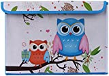 UberLyfe Foldable Kids Toy Storage Box with Blue and Orange Owls - 996