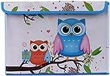 UberLyfe Foldable Kids Toy Storage Box with Blue and Orange Owls - (KSB-000996)