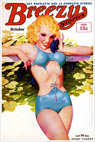 October 1930s Breezy Stories Magazine Vintage Classic Pinup Girl Retro Cover Art Poster - 18x24