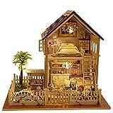Rylai 3D Puzzles Miniature Dollhouse DIY Kit w / Light -Paris Appartement série Maisons de poupées Accessoires avec meubles LED Music Box Meilleur cadeau d'anniversaire pour les femmes et les filles
