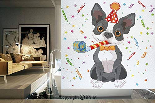 Ylljy00 Decorative Privacy Window Film/Black and White Boston Terrier with Colorful Party Backdrop/No-Glue Self Static Cling for Home Bedroom Bathroom Kitchen Office Decor Multicolor