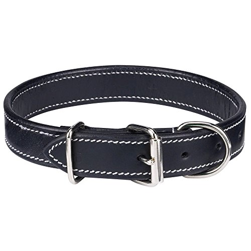 "Casual Canine Flat Leather Dog Collar, Fits Necks 14"" to 18"", Black"