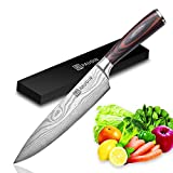 PAUDIN Pro Kitchen Knife 8 Inch Chef's Knife N1 German High Carbon Stainless Steel Knife with Ergonomic Handle, Ultra Sharp, Best Choice for Home Kitchen and Restaurant