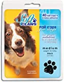 Canine Soft Claws Dog and Cat Nail Caps Take Home Kit - Medium - Black