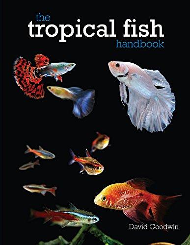 (The Tropical Fish Handbook)