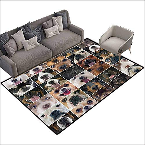 - Floor Mat for Toilet Non Slip Dog Lover Decor Collection,Dogs Studio Shot Chihuahua Chow Chow Cocker Spaniel Poodle Purebred Sheepdog,Brown Black Beige 60