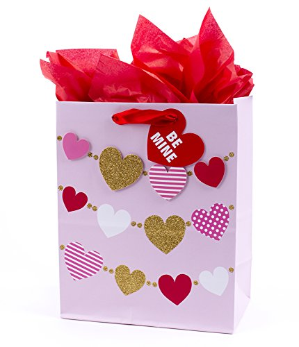 Hallmark Valentine's Day Medium Gift Bag with Tissue Paper (Multi Heart Banner)