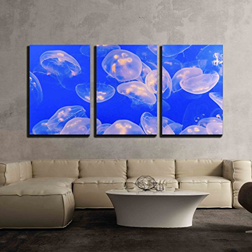 Jelly Fish in The Blue Sea x3 Panels