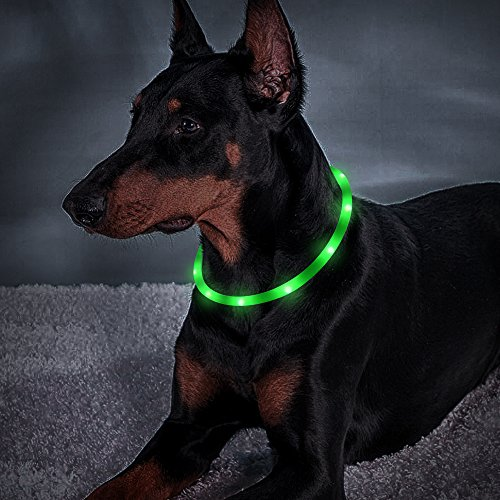 Light Up LED Dog Collar