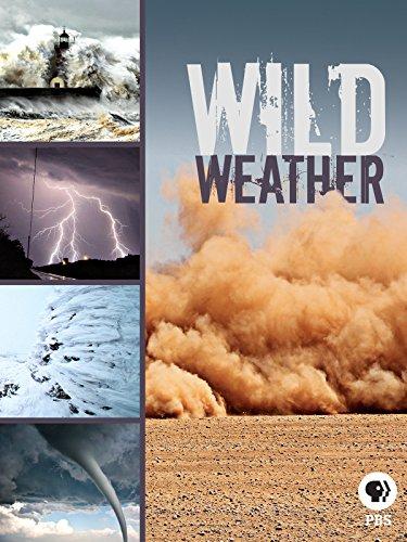 Extreme Weather Videos - Wild Weather