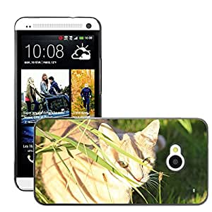 GoGoMobile Slim Protector Hard Shell Cover Case // M00123595 Domestic Cat Cat Cat Face Pet Animal // HTC One M7