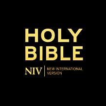 Bible(NIV)