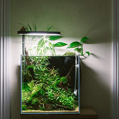 ONF Flat Nano Plus, The Smart Aquarium LED Light, for 2~7gallon Fish Tank, App Controlled, Colorfull LED, Full Spectrum, 15-Watt, 1300 LM, 7000K, One Year Warranty. (Flat Nano+)