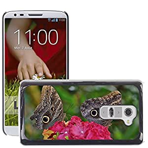 Hot Style Cell Phone PC Hard Case Cover // M00115592 Butterfly Animal Insect Wildlife Fly // LG G2 D800 D802 D802TA D803 VS980 LS980