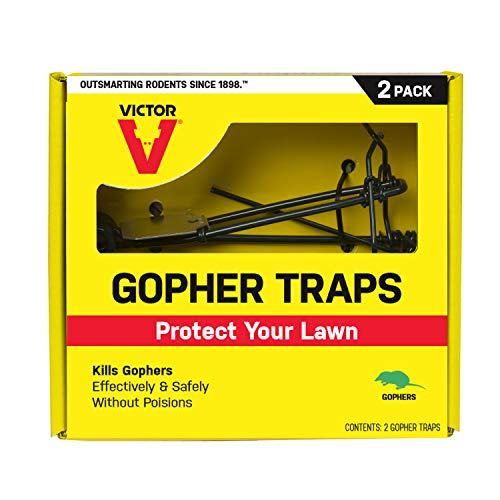 (Victor M9013 Gopher 2 Traps, Black )