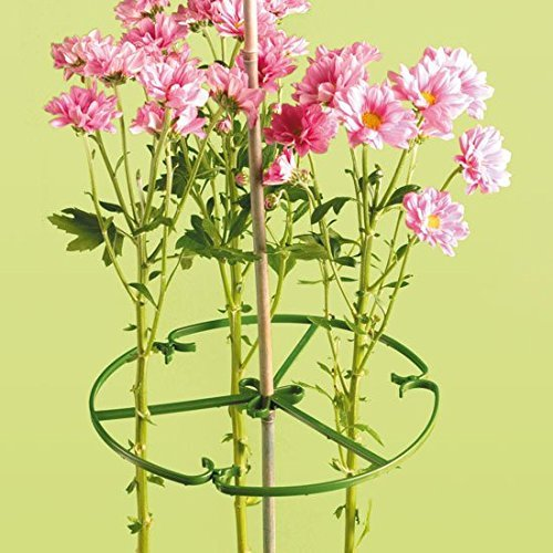 Elixir Gardens /® 10 Inch Plant//Flower Support Rings for Bamboo Canes x 5